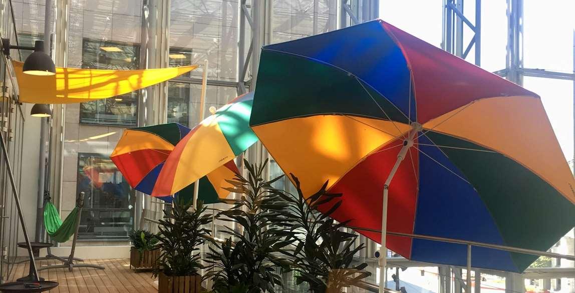 Umbrellas in office. Photo.